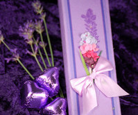 lavender_box-limited_edition-large