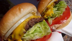 In N Out Cheeseburgers