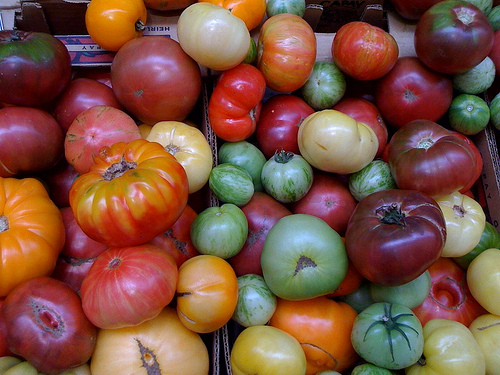 Biodiversity in our food supply is dwindling, but what can we do to preserve it?