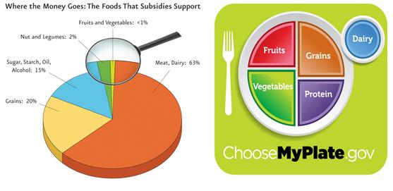 usda food subsidies dietary recommendations