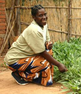 woman organic farm malawi