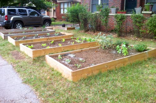 Garden Design Garden Design with Front Yard Vegetable Gardens on