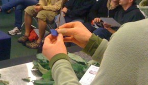 Grafting demo at  Green Festival