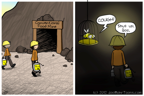 Hank D and the Bee: Bee, the Reluctant Canary