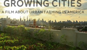 growing cities food documentary