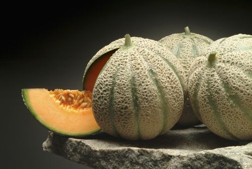 Cantaloupes on Stone