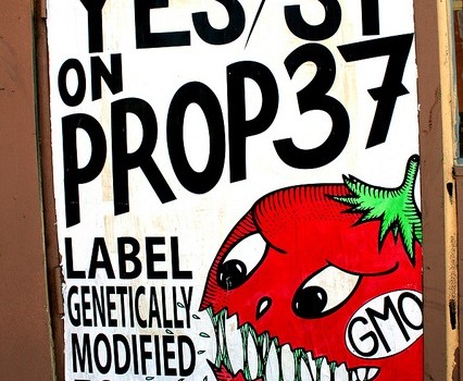 'Yes on Prop 37' Sign