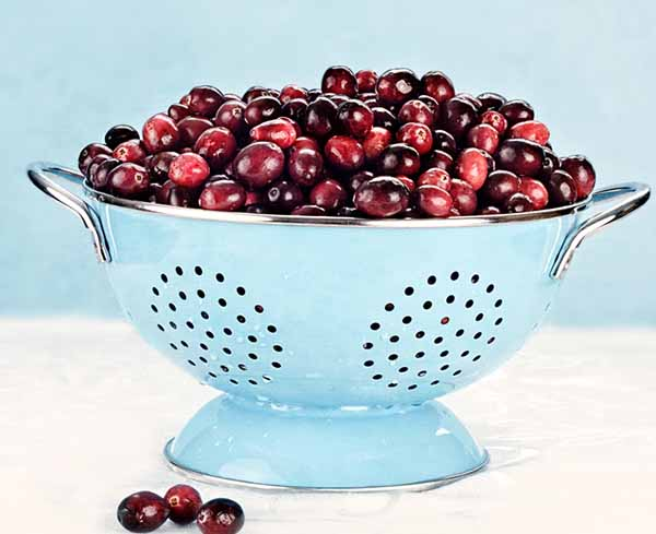 Making homemade cranberry sauce