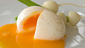 Soft-Cooked Egg