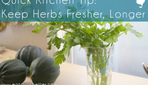 how to keep herbs fresh