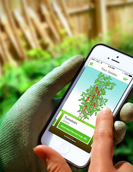Want to grow a bit of fresh food in your backyard, but struggling to iron out the details? A boatload of online tools can guide you, including a newcomer to the web: Sprout it.
