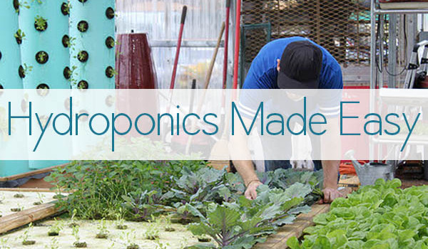 Hydroponics Made Easy