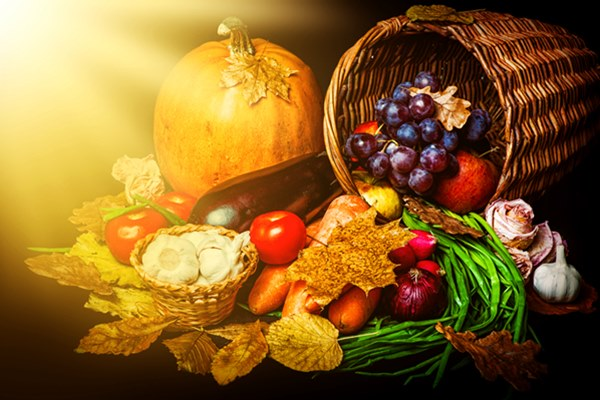 Image result for harvest food