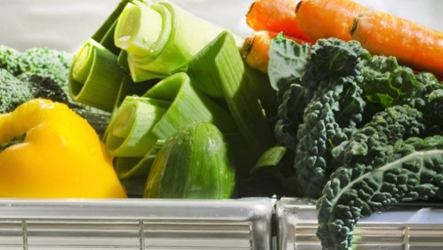 Could you be a diet planner?