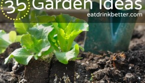 35 Garden Ideas to Get You Growing