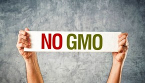 Organic Progress! Oregon Voters Ban GMOs in 2 Counties