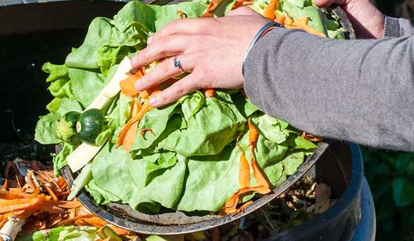 Composting Food Waste Is it the best solution