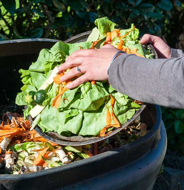 We know that collecting food scraps in a kitchen composter is a good idea, but what happens after you've gathered all of that food waste?