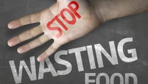 Stop Wasting Food