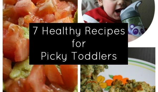7 Toddler Recipes for Picky Eaters