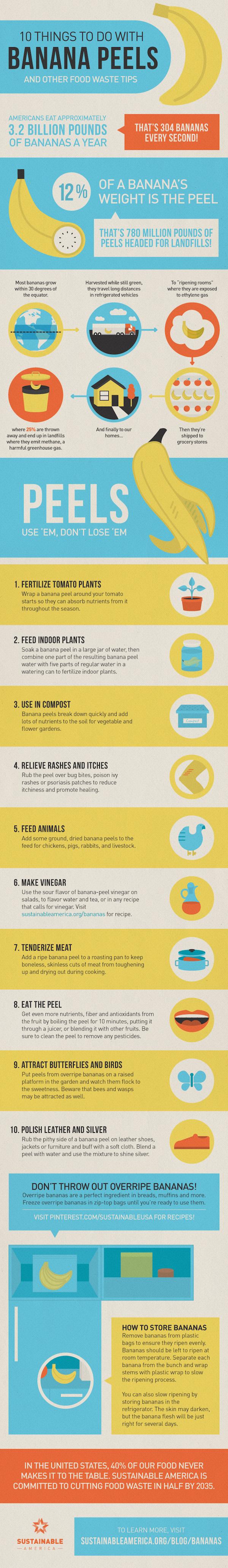 10+ Ways to Reuse Banana Peels