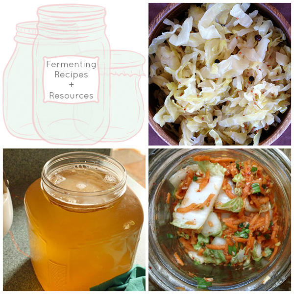 Fermenting Video and Resources for Home Fermentation