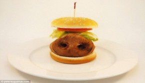 this is what processed food really looks like