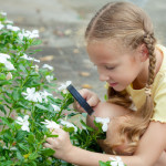 School Gardens To Benefit From Flying Food Waste