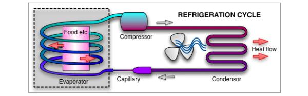 How a Refrigerator Works