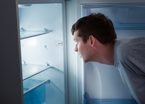 Learn How a Refrigerator Works to Conserve Energy in the Kitchen