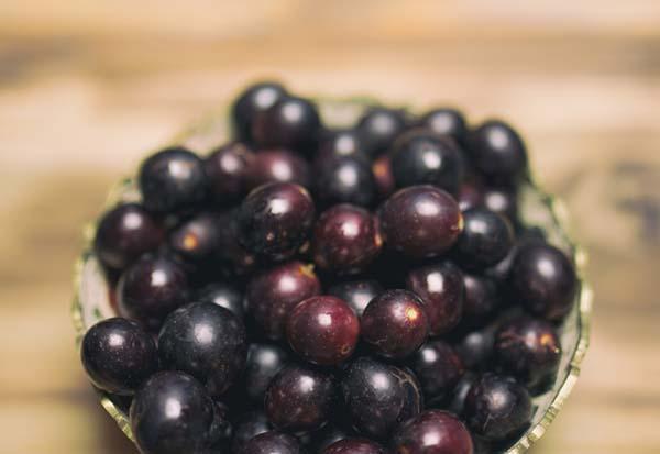 Fall Foods in Season: Grapes