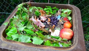 Is Big Food Ready to Address Food Waste?