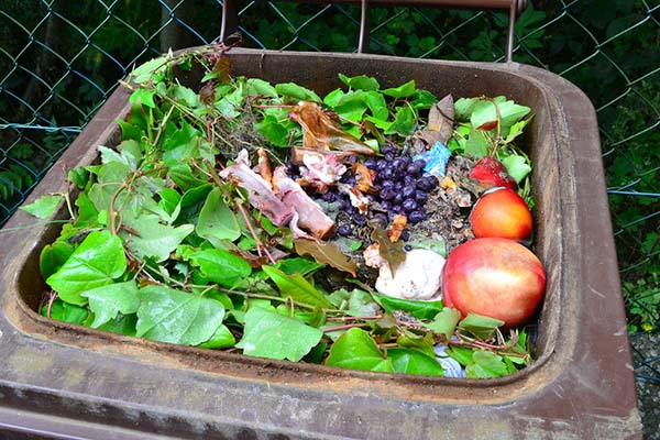 Mandatory Composting Laws in MA, WA