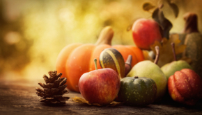 Healthy Thanksgiving Tips for a Fit Feast [Infographic]