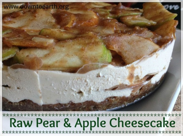 Plant-Based Holiday Recipes: Raw Cheesecake
