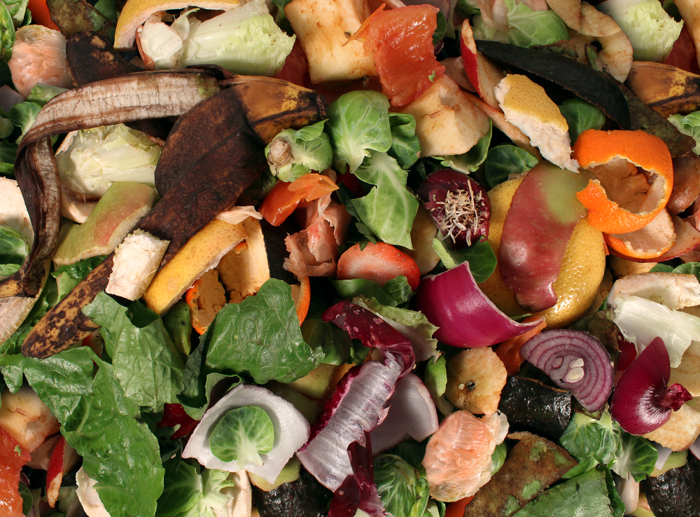 Avoid Thanksgiving food waste