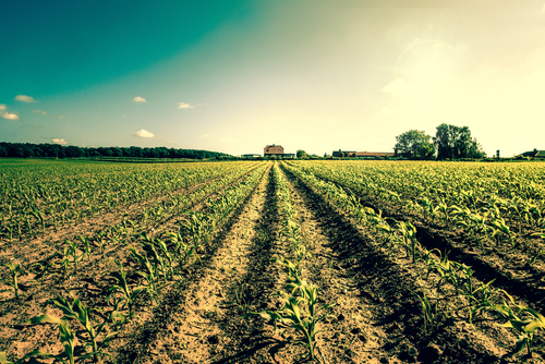Improving the Food Supply Chain for the Planet
