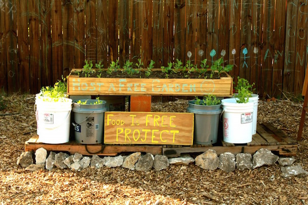 5 Steps to Start a Front Yard Community Garden