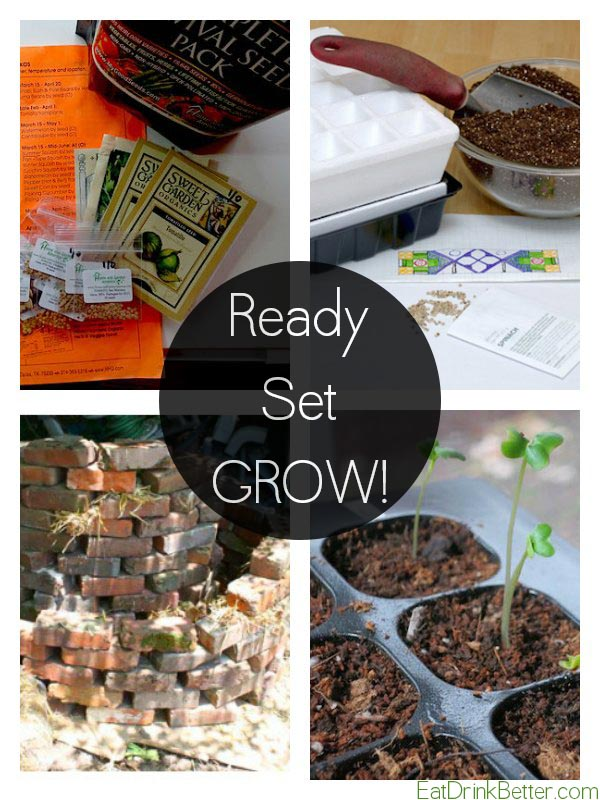 How to Start a Vegetable Garden for Spring (+ crafty garden ideas!)