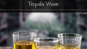 Agave Bagasse: Turning tequila waste into building materials