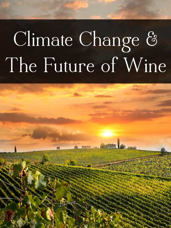 How Climate Change is Impacting Wine Production (and vice versa)