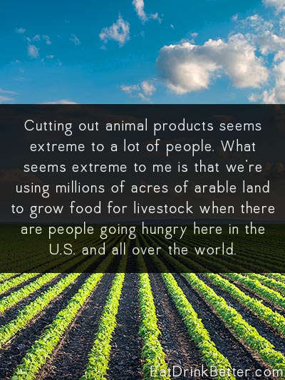 To Feed the World, We Don't Need to Grow More Food