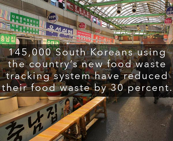 How South Korea is Reducing Food Waste by 30% - With abundance comes waste, and South Korea has seen food waste spike as their economy improves. Here's what they're doing about it.