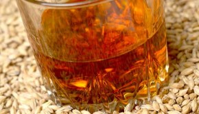 A group of Scottish distillers is using spent grains from whiskey production to generate power for 8,000 homes!
