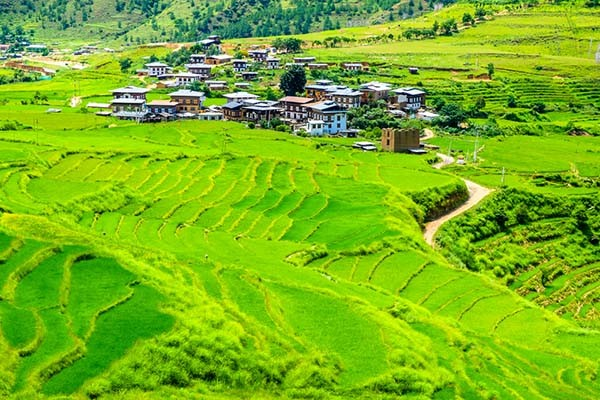 Bhutan Organic Pledge: Country to go 100% Organic by 2020