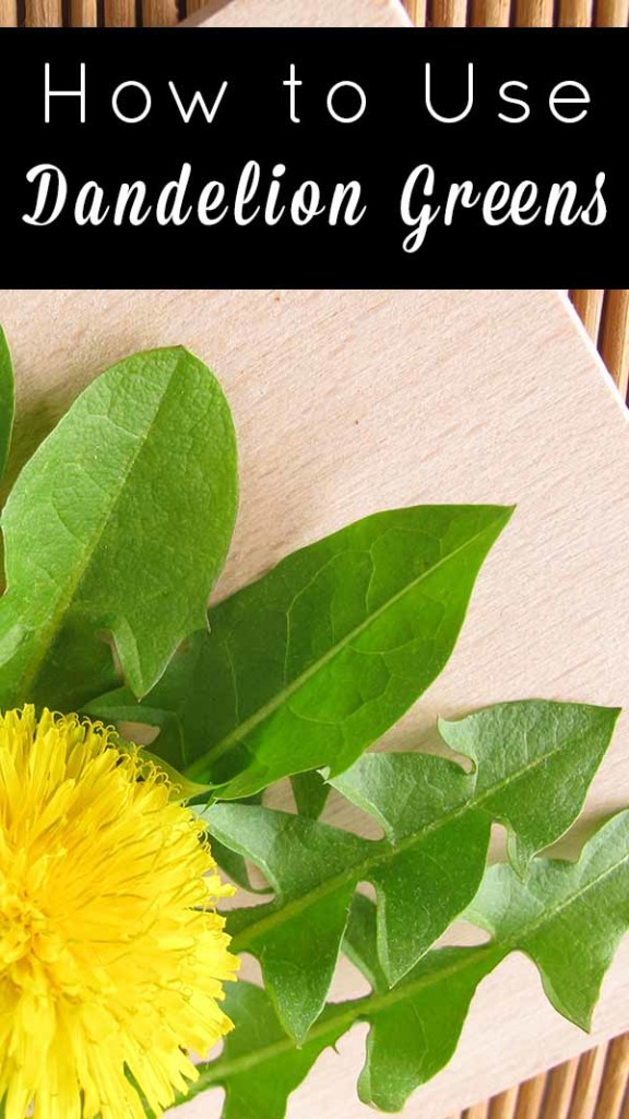 Dandelion greens are health powerhouses. Learn how to cook with dandelion greens and what makes them so good for you.