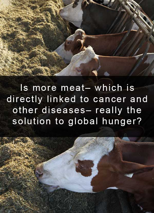 The drug free meats debate misses the point. To feed the world, we need to eat more plants.