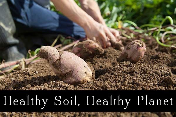 Healthy soil is critical to our food future, and supporting regenerative farming is an important piece of that puzzle.