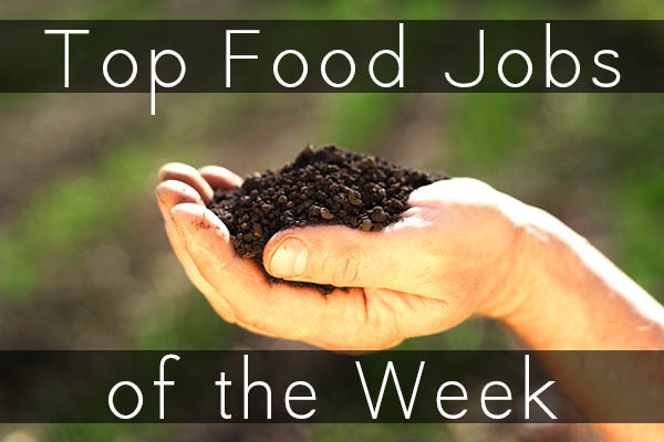 Looking for a job in the world of sustainable food? Here are the top food job listings from Green Job Post.
