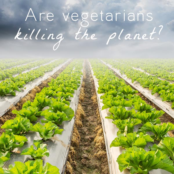 Vegetarians are not killing the planet, and a new press release suggesting that they are gets it wrong.